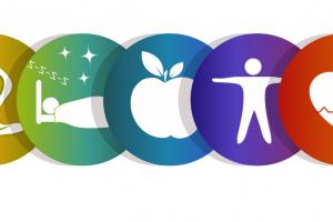 Proyecto dePromoción de la Salud  2017-2018